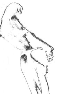 disegno 16